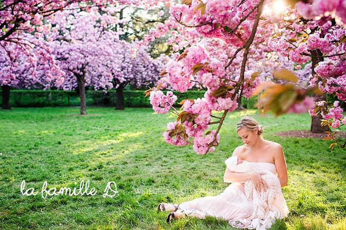 photographe bébé Paris sous les cerisiers japonais