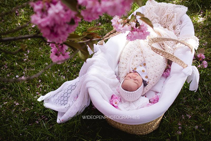 seance-bebe-cerisiers-01